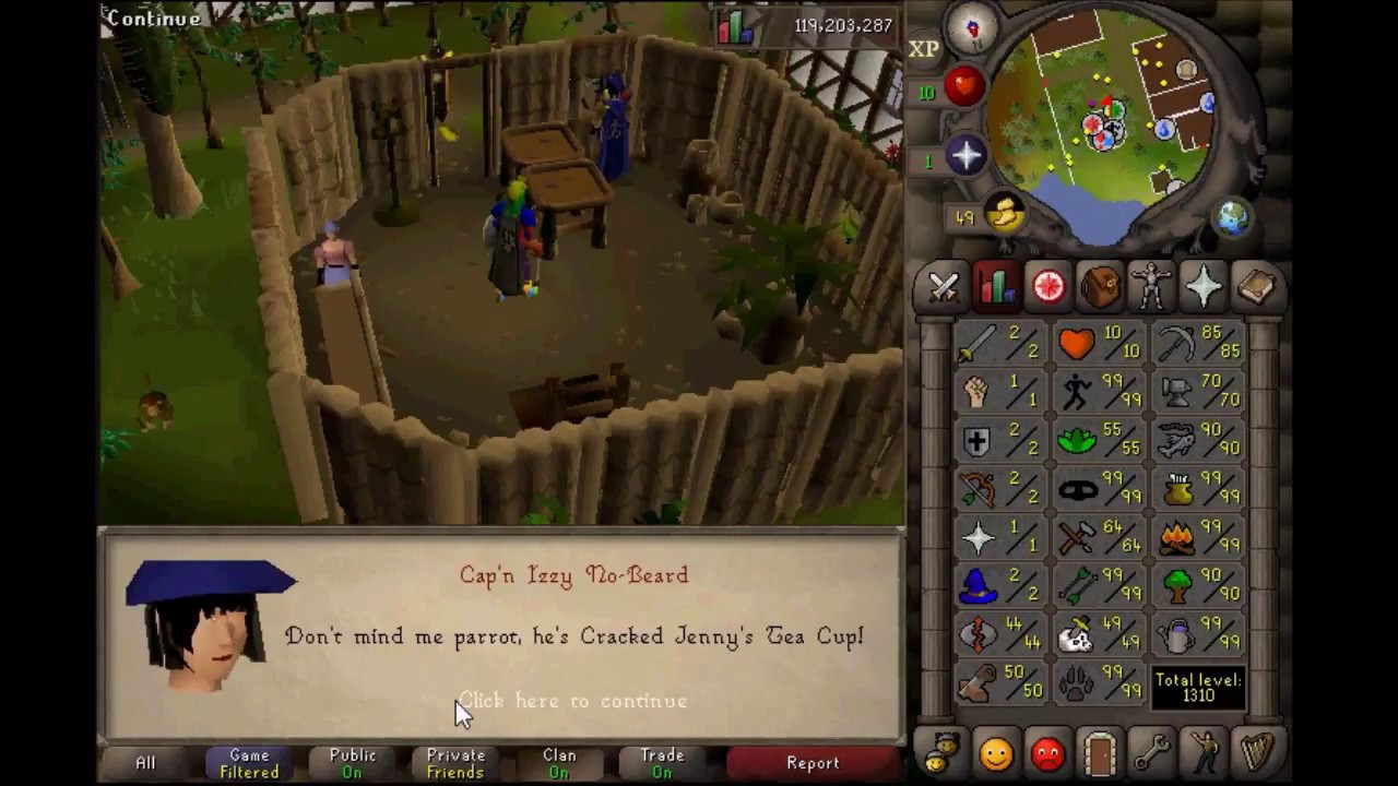 07RS Kity Level 3 Skiller Gets 99 Agility