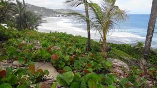 Karibik intensiv vom 27.11.-12.12.2011