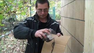 Гибкий мрамор, Flexible marble, Flexible stone(Гибкий мрамор,он же гибкий камень и гибкий песчаник. http://mramorlit.com/ главная страница сайта http://mramorlit.com/index.php?men..., 2011-10-29T15:31:09.000Z)