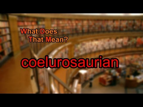 What does coelurosaurian mean?