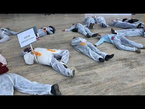 ناشطون يتهمون بنك -إينغ- بتمويل استثمارات تلوث البيئة  - نشر قبل 5 ساعة
