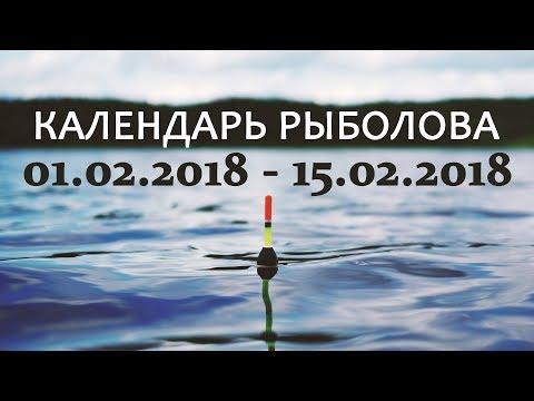 видео: Календарь рыболова на февраль 01.02 - 15.02.2018 от Аборигена
