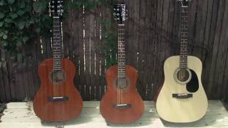 Zager 3/4 Travel and 4/5 Parlor Size Acoustic - 2012 Models