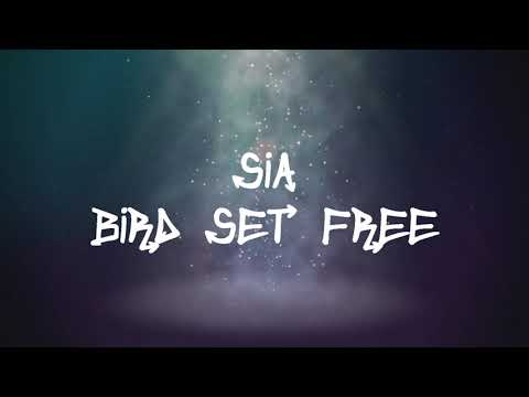Sia - Bird Set Free (Lyrics)