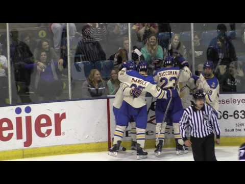 MSU Vs. LSSU Friday 11-4-16 Highlights