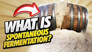 How Lambic Is Fermented with 3 Fonteinen.  Spontaneous Fermentation Explained