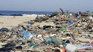 Куда вымывает пластиковый мусор? (новости)