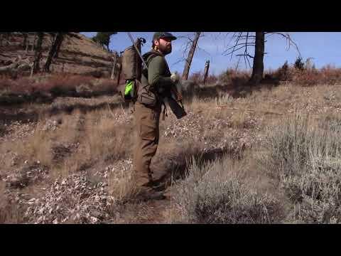 Mule Deer Hunt   Frank Church River Of No Return