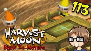 Harvest Moon Back to Nature - 113 - Harvest Sprite Mental Breakdown