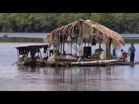 Paumari: O povo da água