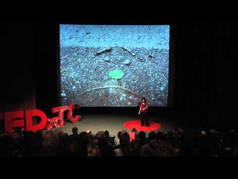 TEDxTC - Terrie Rose - From the Baby's Point Of View - YouTube