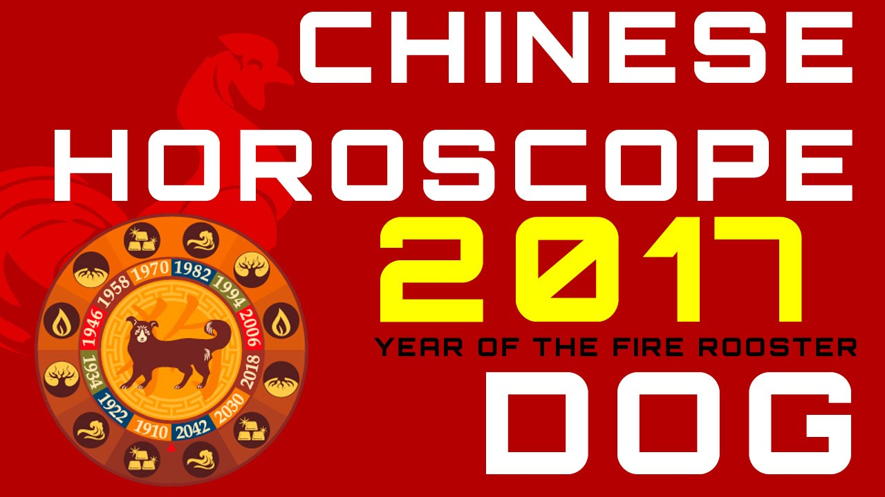 Dog 2017 Chinese Horoscope Predictions Youtube