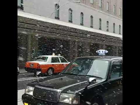 Snowing in Kyoto on 27 Jan 2018