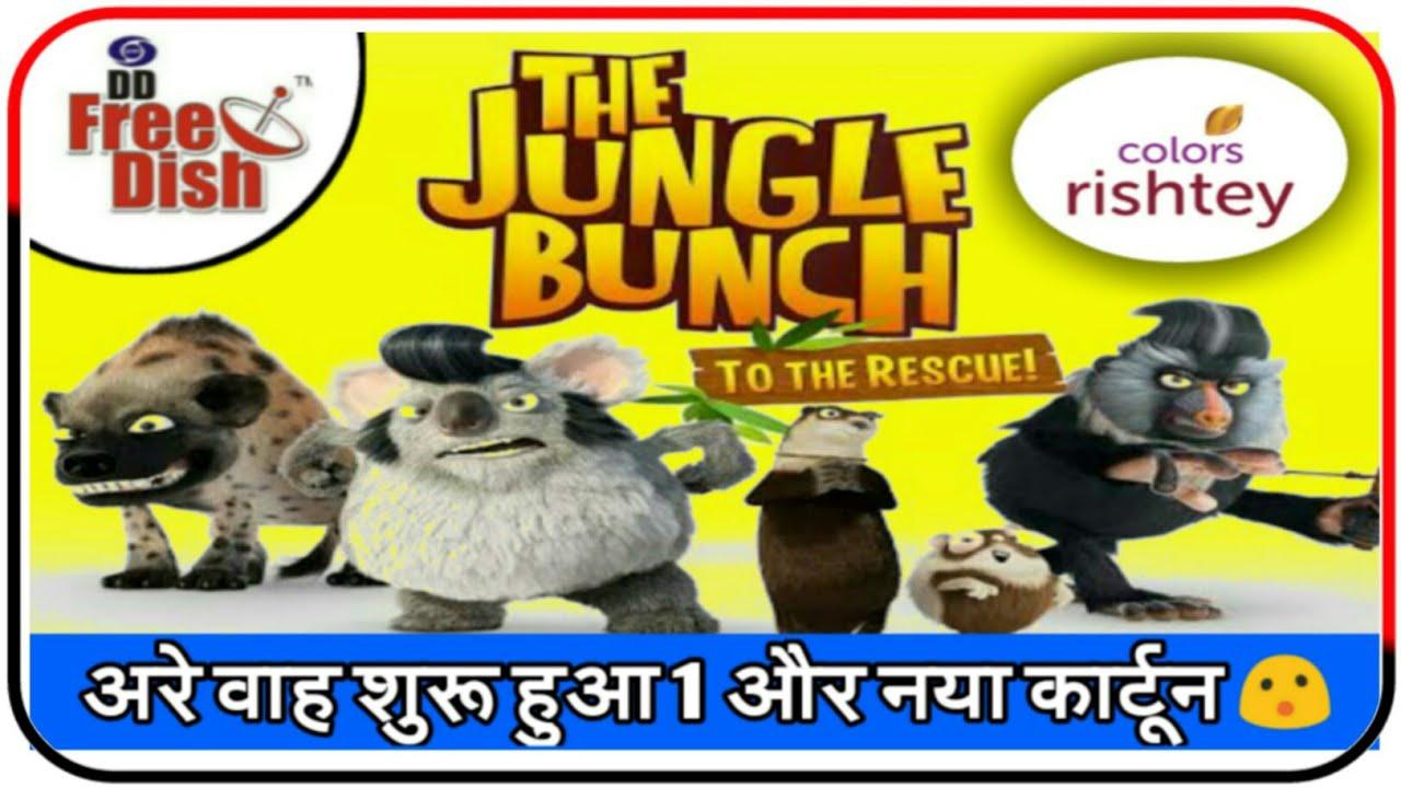 Colors Rishtey Start New Cartoon Program | DD Free Dish