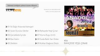 Anadolu Yıldızı Murat Savaş - Bahçede Yeşil Çınar (Official Audio)