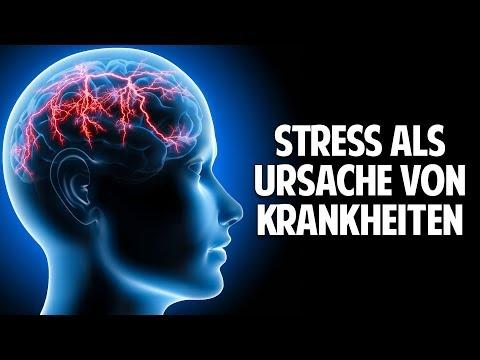 Stress als Ursache von Krankheiten und die Auswirkungen im Körper - Dr. Jürgen Buhr