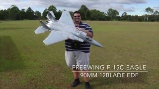 Maiden Flight of my Freewing F-15C Eagle Super Scale 90mm EDF Jet
