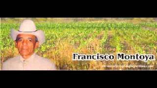 Francisco Montolla - Cucarachero Araucano.WMV