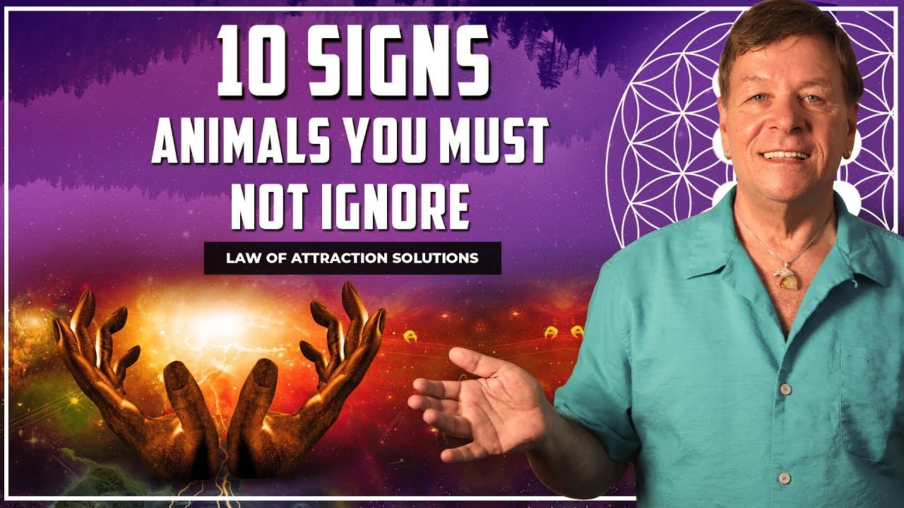 10 Signs - Animals You Must Not Ignore - Totem Spirit Animal Messages