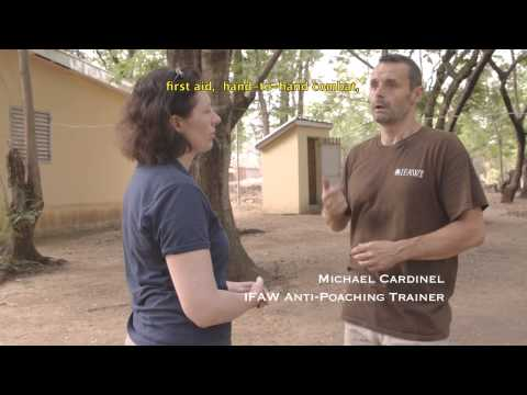 IFAW - anti-poaching training in Cameroon and Chad