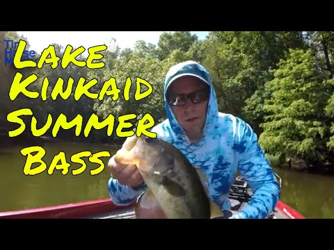 Lake Kinkaid Bass Fishing Report July 26th 2019