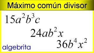 Máximo común divisor de monomios 384