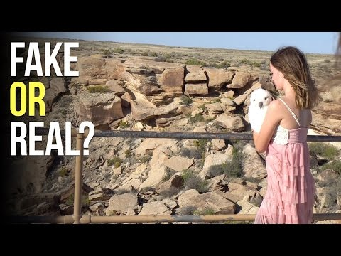 Checking Out the Petrified Forest National Park - Our Airstream Life