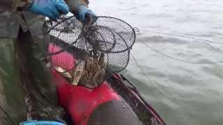 видео: ловля раков