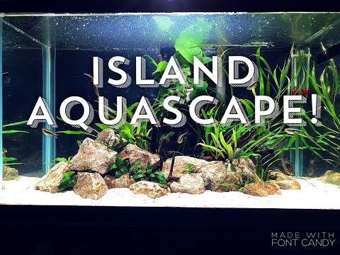 ISLAND AQUASCAPE! | New SCAPE, new LIGHTING, new STAND, new FISH!