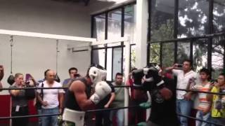 Juan Manuel Márquez vs rocky Santillo Sparring sesión