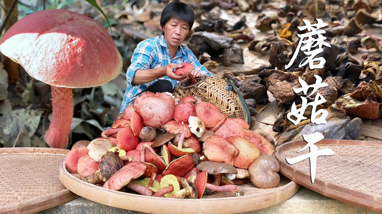 阿嬷采了满箩筐蘑菇,晒成蘑菇干,纯天然的山珍美味!【闽湖阿嬤Fujian Grandma】