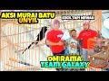 Murai Batu Unyil Latpres Garuda Army Spesial Kemerdekaan Indonesia Sultan Akbar  Mp3 - Mp4 Download