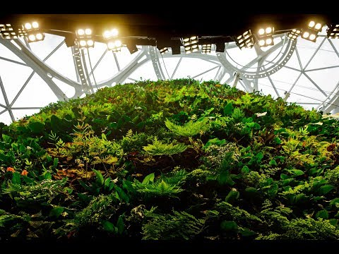 wine article Amazon Spheres Living Wall