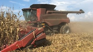 corn harvest 2016 case ih 9240 combine and 16 row corn head