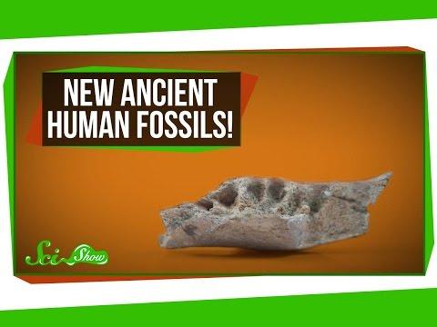 New Ancient Human Fossils!