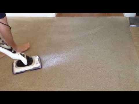 Shark Sonic Duo Carpet Demo