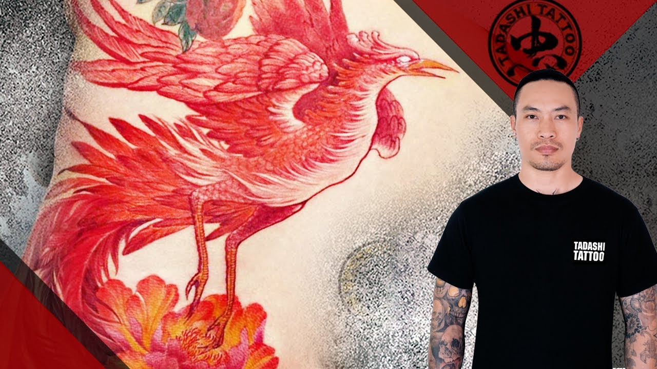 HÌNH XĂM PHƯỢNG HOÀNG | Phoenix tattoo by Tadashi Tattoo | Bao quát các kiến thức về hình xăm chim phượng hoàng đầy đủ nhất