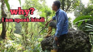 Today vlog Why I m speak hindi