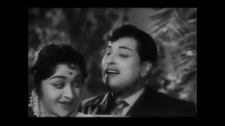 Pattu Selai Katrada Video Song | Thai Sollai Thattadhe | MGR, Saroja Devi