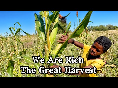 We Are Rich | The Great Harvest | The Riches Of Our Land | Namibia - 29 Aug 2021