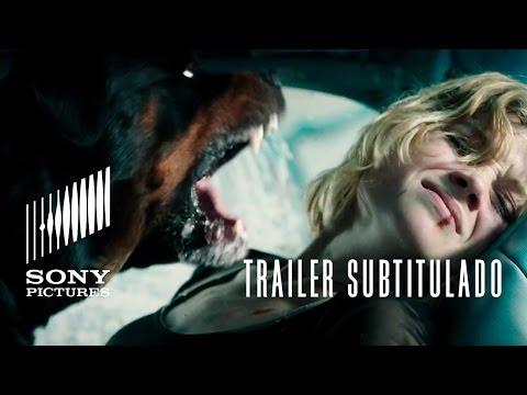 NO RESPIRES (Don't Breathe) | Trailer subtitulado HD