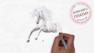 Как просто нарисовать красивую лошадь карандашом(как нарисовать лошадь, как нарисовать лошадь поэтапно, как нарисовать карандашом лошадь, как нарисовать..., 2014-08-07T06:13:55.000Z)