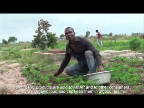 Agriculture in Benin - fieldworks project film
