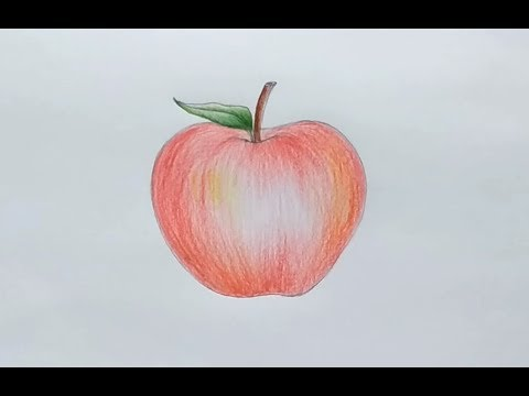 How To Draw an Apple Step By Step For Beginners