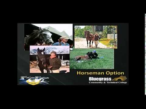 WSS 2014 (Part 11 – Advanced Horsemanship)