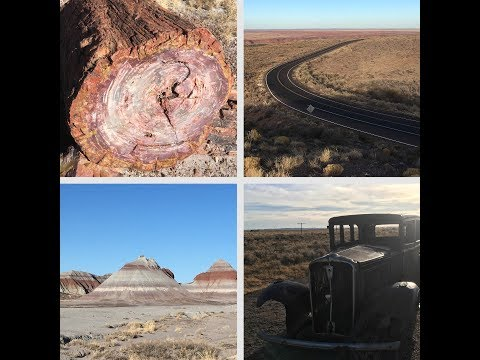 WOW air travel guide application : The Petrified Forest