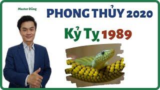 Tử Vi Phong Thủy Tuổi Kỷ tỵ 1989 trong năm 2020 | Phong Thủy Năm 2020