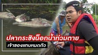 ปลากระชังน็อกน้ำท่วมตาย เจ้าของแทบหมดตัว | ข่าวช่องวัน | one31