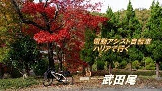 電動アシスト自転車 ハリアで 紅葉の武田尾へ行ってきました。