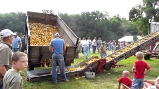 2011 Tippecanoe Steam And Power Show Unloading Ear Corn 7/29/11